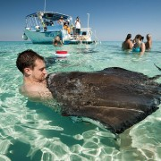 moby-dick-tours-stingray-city-1