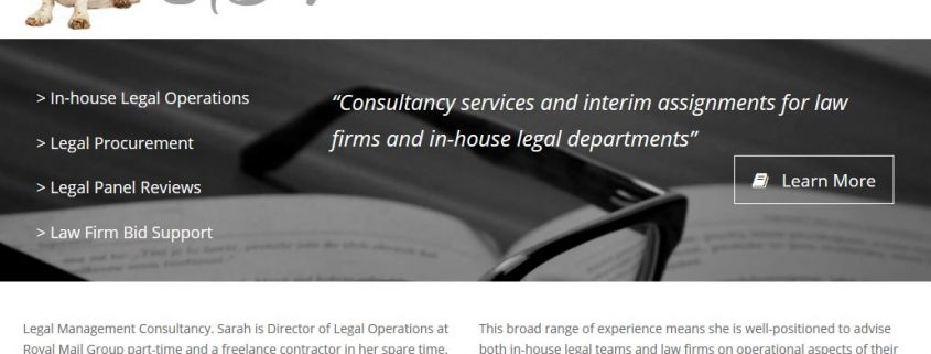 SBV Consulting website